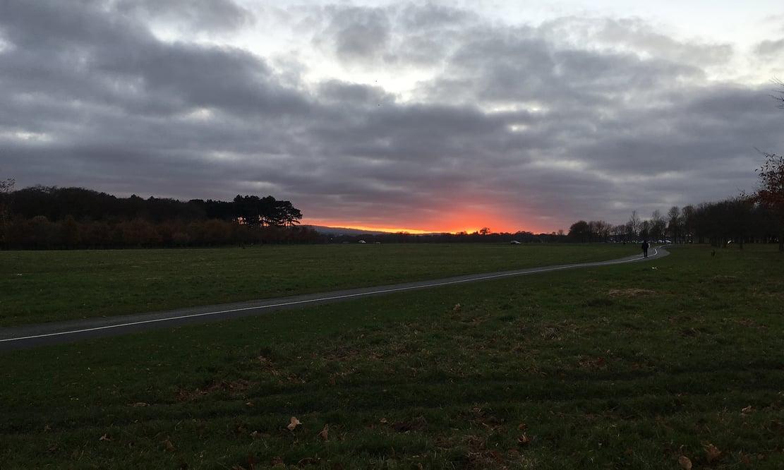 Sunset over Phoenix Park in Dublin, Ireland