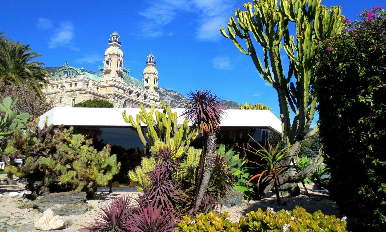 Gardens in Monte-Carlo, Monaco