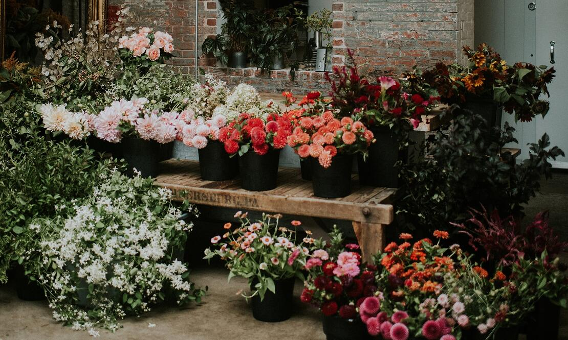 The latest harvest in the Flowers by Semia studio